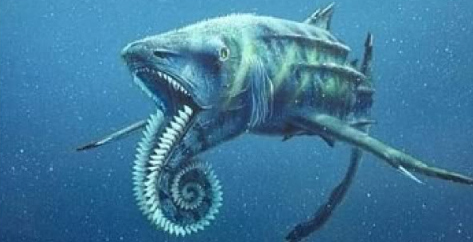 REALLY Shark Week From Megalodon To Submarine Discovery