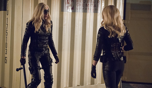 Arrow Canary Vs Canary Canaries