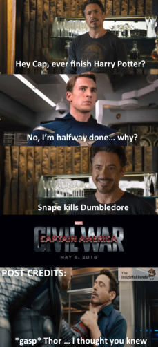 You've gone too far Tony Harry Potter Civil War Meme