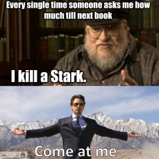 George RR Martin Stark Meme