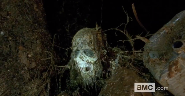 Swamp Walker