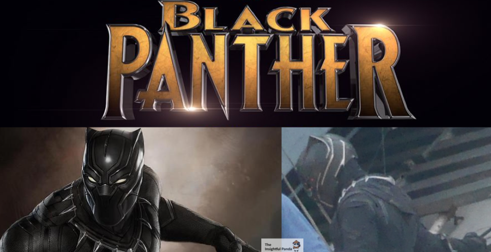 Black Panther Costume U0026 Possible Fight Scenes Revealed | The Insightful Panda
