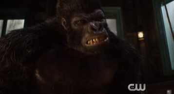 The Flash Gorilla Warfare Grodd 2