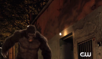 The Flash Gorilla Warfare Grodd